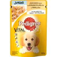 Pedigree Junior mit Huhn in Gelee Komplettfutter 100g